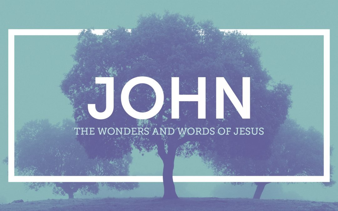 """The Beauty of Our Salvation, Part 2"" JOHN: Week 2 (John 6:49-71)"